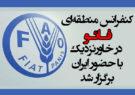 کنفرانس منطقهای فائو در خاورنزدیک با حضور ایران برگزار شد