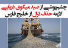 چشمپوشی از صید میگوی دریایی، لازمه حذف ترال از خلیج فارس