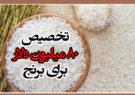 تخصیص ۸۰ میلیون دلار برای برنج/ ۲۳۰ هزار تن در آستانه ترخیص