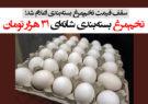 تخممرغ بستهبندی شانهای ٣١ هزار تومان