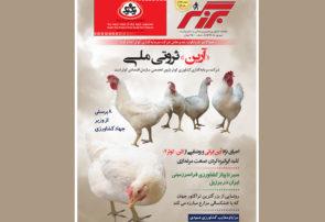 کلید ایرانیزهکردن صنعت مرغداری در برزگر شهریور