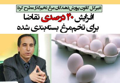 افزایش ۴۰ درصدی تقاضا برای تخممرغ بستهبندی شده