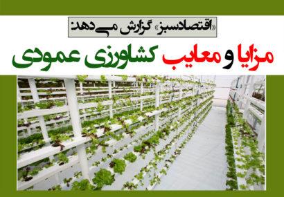 مزایا و معایب کشاورزی عمودی