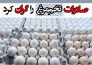 صادرات تخممرغ را گران کرد