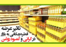 تاثیر عرضه قطرهچکانی به بازار در گرانی و کمبود روغن