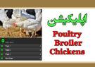 اپلیکیشن Poultry Broiler Chickens