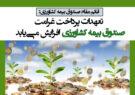 تعهدات پرداخت غرامت صندوق بیمه کشاورزی افزایش مییابد