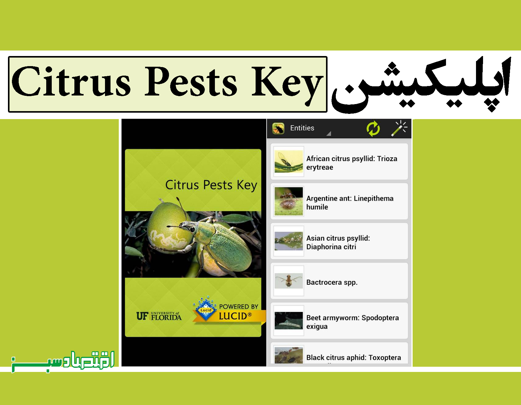اپلیکیشن Citrus Pests Key