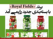 برند «Royal Fields» با بستهبندی جدید رژیمی آمد