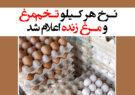 نرخ هر کیلو تخممرغ و مرغ زنده اعلام شد