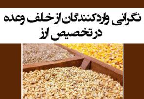 نگرانی واردکنندگان از خلف وعده در تخصیص ارز