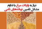 نیاز به واردات مرغ با تداوم مشکل تامین نهادههای دامی