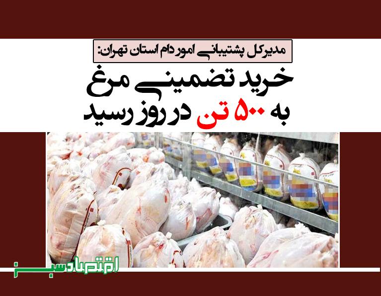 خرید تضمینی مرغ به ۵۰۰ تن در روز رسید