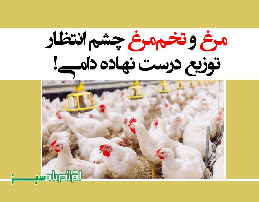 مرغ و تخممرغ چشم انتظار توزیع درست نهاده دامی!