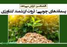 پسماندهای چوبی؛ ثروت ارزشمند کشاورزی