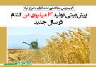پیشبینی تولید ۱۳ میلیون تن گندم در سال جدید