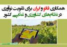 همکاری فائو و ایران برای تقویت نوآوری در نظامهای کشاورزی و غذایی کشور