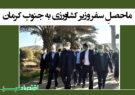 ماحصلِ سفر وزیر کشاورزی به جنوب کرمان