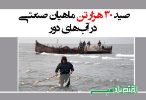 صید ۳۰ هزار تن ماهیان صنعتی در آبهای دور