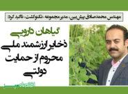 گیاهان دارویی ذخایر ارزشمند ملی محروم از حمایت دولتی