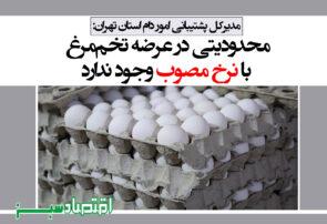 محدودیتی در عرضه تخممرغ با نرخ مصوب وجود ندارد