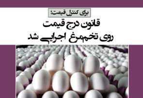 قانون درج قیمت روی تخممرغ اجرایی شد