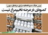 کمبودی در عرضه تخممرغ نیست