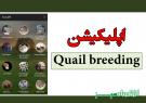 اپلیکیشن Quail breeding