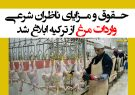 حقوق و مزایای ناظران شرعی واردات مرغ از ترکیه ابلاغ شد + سند