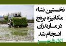 نخستین نشاء مکانیزه برنج در مازندران انجام شد