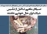 صیادان ماهی تا قبل از تأسیس شیلات ایران حال خوشی نداشتند