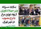 بازدید سرزده وزیر جهادکشاورزی از روند توزیع مرغ با نرخ مصوب در شهر تهران